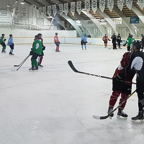 Cudworth Arena - Rinks