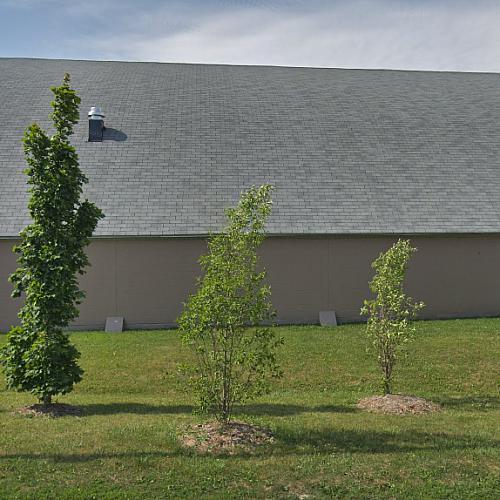 Bond Lake Arena