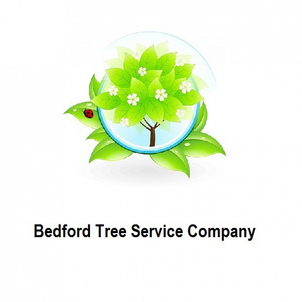 bedfordtreeservice profile