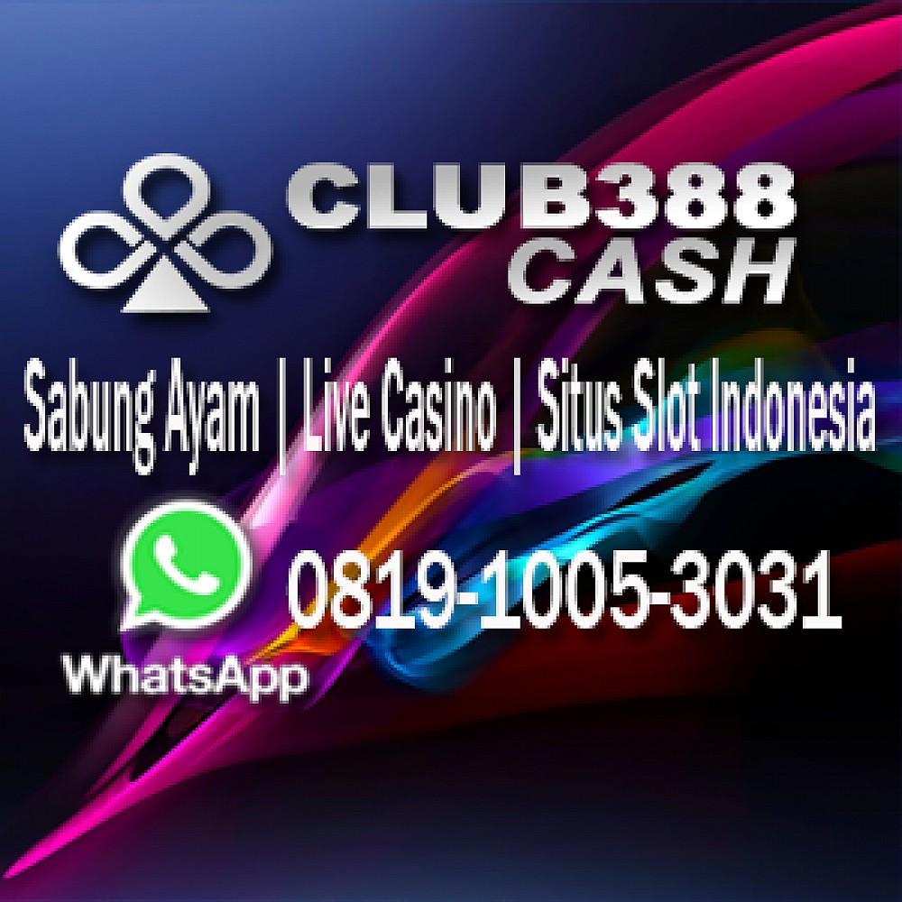 club388slot profile