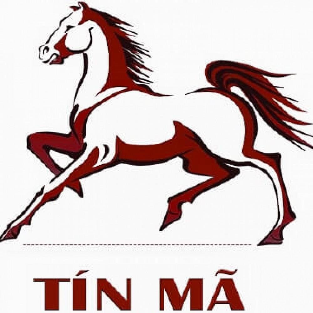 tinma2021 profile